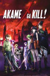 Akame ga KILL! + ONA