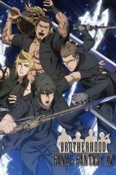 Final Fantasy XV Brotherhood ONA