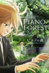 Piano no Mori  The Piano Forest