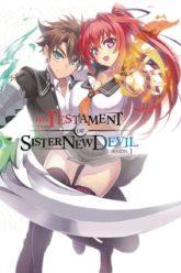 Shinmai Maou no Testament~The Testament of Sister New Devil